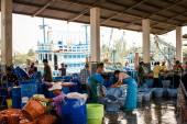 Thailand - January 21 :fish market in fishing village, Nakhon Si — Stock Photo