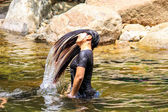 Young cute girl waving hair in the water, waterfall thai travel  — Stock fotografie