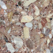 Conglomerate — Stock Photo #54004775