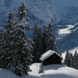 Winter Scene In Braunwald — Stock Photo #62981351