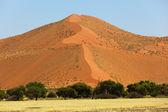 Big red sand dune — Stock Photo