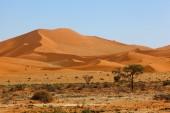 Endless Namib dunes — Stock Photo