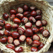 Chestnuts — Stock Photo #55083041