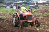 Restored Vintage Farm Tractor Ploughing Field for Planting — Stock Photo