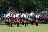 Colorful Traditional Scottish Caledonian Pipe Band Performing  — Stock Photo