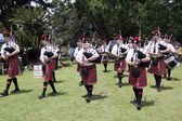 Caledonian Pipe Band Marching and Performing Outdoors — Stock Photo