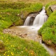 Rapids on mountain stream in spring meadow of Alps. Cold misty and rainy weather. — Foto Stock #51868451