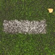 End of football season. Dry birch leaf fallen on ground of plastic green football turf with painted white line . — Stock Photo #52336317
