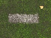 End of football season. Dry birch leaf fallen on ground of plastic green football turf with painted white line . — Stock Photo