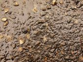 Wet burnt ash of grass solidified by rain into dark mud. Water hanged ash into cover of  clay. — Stock Photo