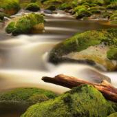 Rot trunk blocked on stones. Stream bank above bright blurred waves. Big mossy boulders in clear water of mountain river. — Stock Photo