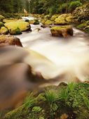 Big stones in foamy water of rapid stream. Light blurred water bended between boulders — Stock Photo