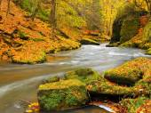 Autumn colorful mountain river. White foamy rapids in curve of river. Gravel and boulders on river banks covered with colorful leaves, fresh green mossy stones. — Stock Photo