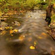 Mountain river with low level of water, gravel with first colorful leaves. Mossy rocks and boulders on river bank, green fern, fresh green leaves on trees. — Stock Photo #56269501