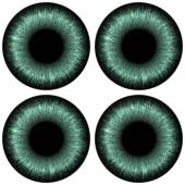 Eyes set with colored iris generated hires texture — Stock Photo