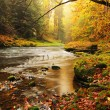Dreamy sunset above mountain in autumn forest. Colorful mist between trees on river banks. — Stock fotografie #56654731
