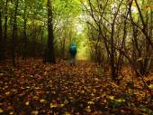 Man walking in dark misty forest in autumn — Stock Photo