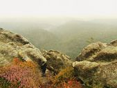 View into deep misty valley, peaks  of trees increased from autumn fog. — Stock Photo