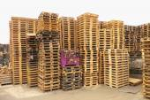 Stock of repaired wooden euro pallets at transportation company. — Stock Photo