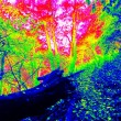 Thermal photo of footpath in autumn forest. Leaves on the ground in changed colors. Photography in spectrum of invisible light. — Stock Photo #59308191