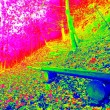 Thermal photo of footpath in autumn forest. Leaves on the ground in changed colors. Photography in spectrum of invisible light. — Stock Photo #59308197