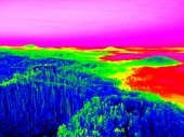 Fantastic infrared scan of rocky  landscape, pine forest with colorful fog — Stock Photo