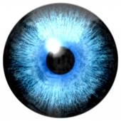 Illustration of blue eye iris, light reflection — Foto Stock