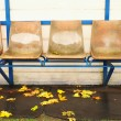 Old plastic seats on outdoor stadium players bench, chairs with worn paint below yellow roof.  Autumn leaves, end of football season. — Stock Photo #59823311