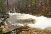 Huge stream of water is falling into foamy pond below. High cascade in forest. Crystal freeze water of mountain river. — Stock Photo