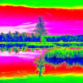 Mountain lake in middle of swamp with small island. Sky in mirror of water level, strange colors of thermography photo. Boulders and water level in shadows of trees. — Stock Photo