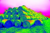 Damaged rotten wheat straw bundles, on green field. Strange colors of thermography photo. — Foto Stock