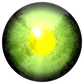 Animal eye with large pupil and bright yellow retina in background. Slim colorful iris around pupil, detail view into eye bulb. — Stock Photo