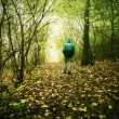 Hunched man is walking in colorful forest in autumn mist — Stock Photo #76188891