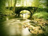 Old stony bridge above autumn river. Water of stream full of colorful leaves, leaves on gravel, blue blurred water is running over boulders — Foto de Stock
