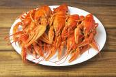 Tasty boiled crayfishes on a white plate  — Stock Photo