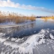 Beautiful winter landscape with frozen lake, reeds and power pla — Stock Photo #59725671