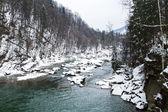 Prut river in Carpathians, Ukraine . — Stock Photo