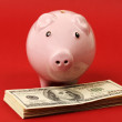 Little pink piggy bank standing on stack of money american hundred dollar bills on red background — Stock Photo #62858483