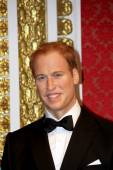 Prince William. — Stock Photo