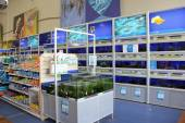 Visproducten en aquaria — Stockfoto