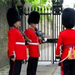 Royal guards at Buckingham Palace — Stock Photo #71062177