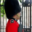 Royal guard at Buckingham Palace — Stock Photo #71064761