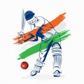 Cricket player with Hungarian flag — Stock Vector