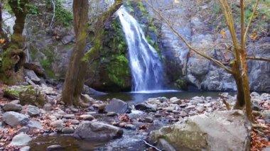 Wasserfall in der natur — Stockvideo