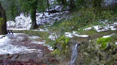 Waterfall in Winter and a Man Walking in Nature — Vídeo de Stock