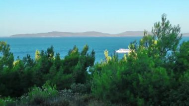 Ferryboat is Passing and Nature — Stockvideo