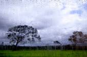 View of the landscape through the glass with raindrops — Stock Photo