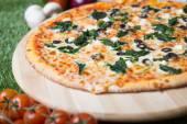 Zapečená italská pizza se sýrem, zeleninou, masem a byliny na trávě — Stock fotografie