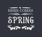Spring Vintage Frames and Floral Ornaments — Stockvektor