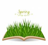 Spring with grass in the book — Stock Vector